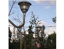 אור יהודה